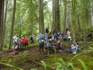 Wilson Creek Forest (Block - EW002) Trail Walk 021