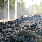 BCTS slash pile burning on B+K Rd  above Roberts Creek 018