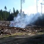BCTS slash pile burning on B+K Rd  above Roberts Creek 029