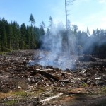 BCTS slash pile burning on B+K Rd  above Roberts Creek 031