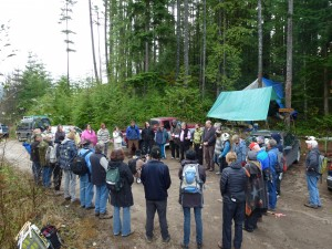 Wilson Creek Forest - Artists and Supporters Gather at the Trailhead