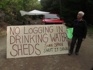 concerned citizens protecting the chapman creek community watershed