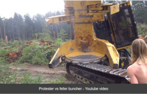 Protester vs feller buncher - Youtube video